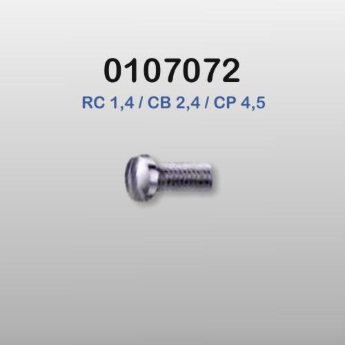 0107072 - Parafuso 01 Alpaca Multiuso  [RC1,4/CB2,4/CP4,5] Mod 218  -Contém 100 Peças
