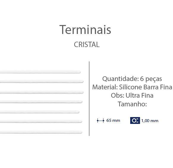 0200666 - Terminal 02 Haste Titanio D=1,00mm Silic Incolor Mod 666 FLAG E  -Contém 6 Peças