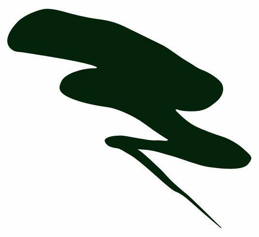 0207115 - Esmalte Retoque Laka Verde Mod 7115 FLAG P  -Contém 12 Ml